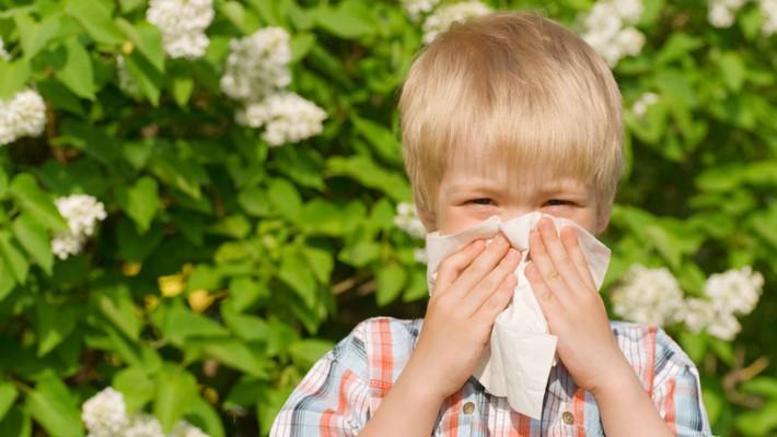 Весенняя аллергия у ребенка